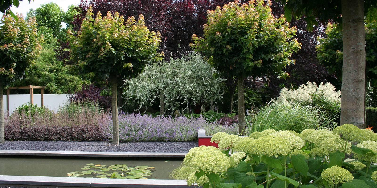 Wijsman hoveniers is uw tuinspecialist in tuinaanleg tuinrenovatie en tuin onderhoud for De eigentijdse tuin